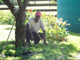 Trevor the Garden Genie